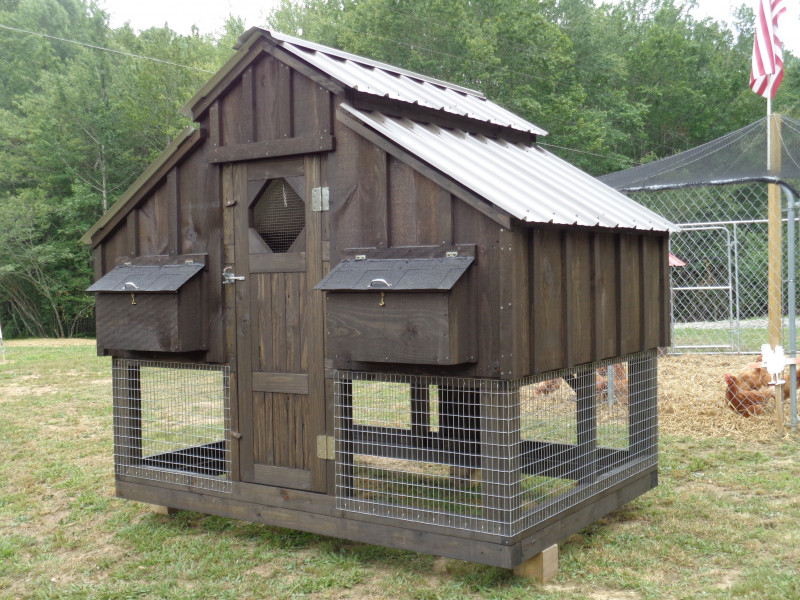 The Ideal Coop and Cages For Your Chicken