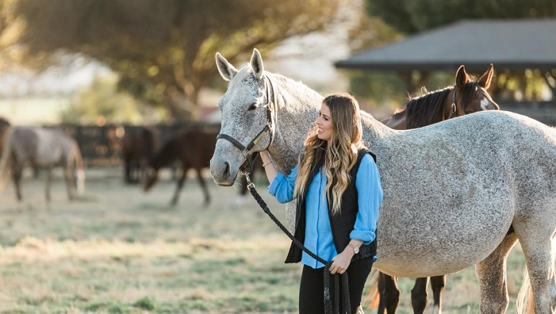 Which factors you should consider before choosing a miniature horse farm in Kentucky?