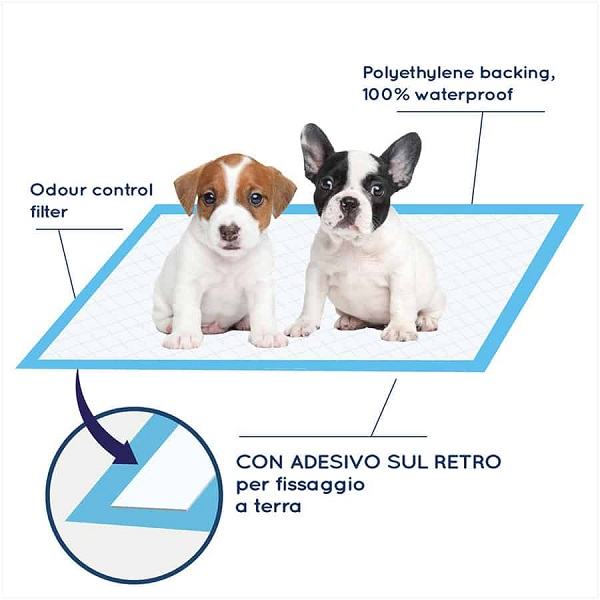 Pee Training For Dogs With Training Dog Pads