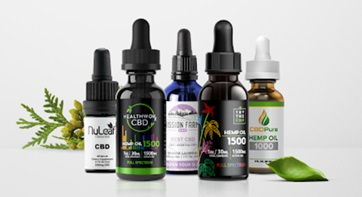 Is CBD a Safe Source of Comfort & Relief for Dogs?